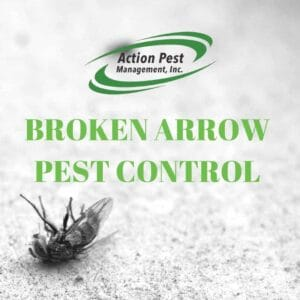 Broken Arrow Pest Control Company